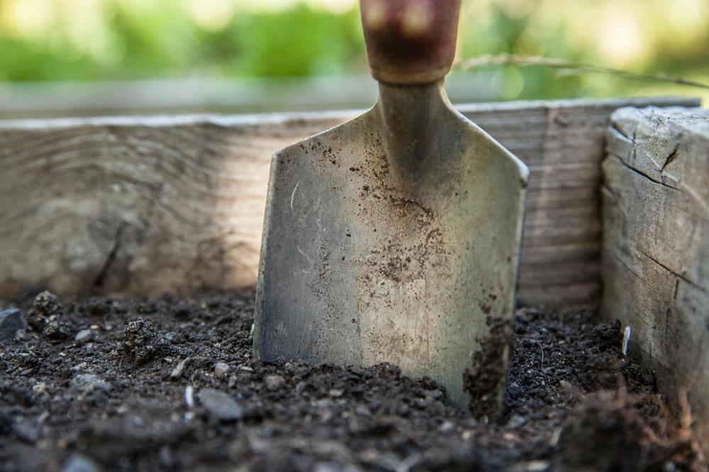What Can Yard Work Teach Lawyers about Project Management?